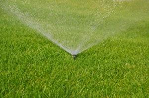 Get your sprinkler system checked!